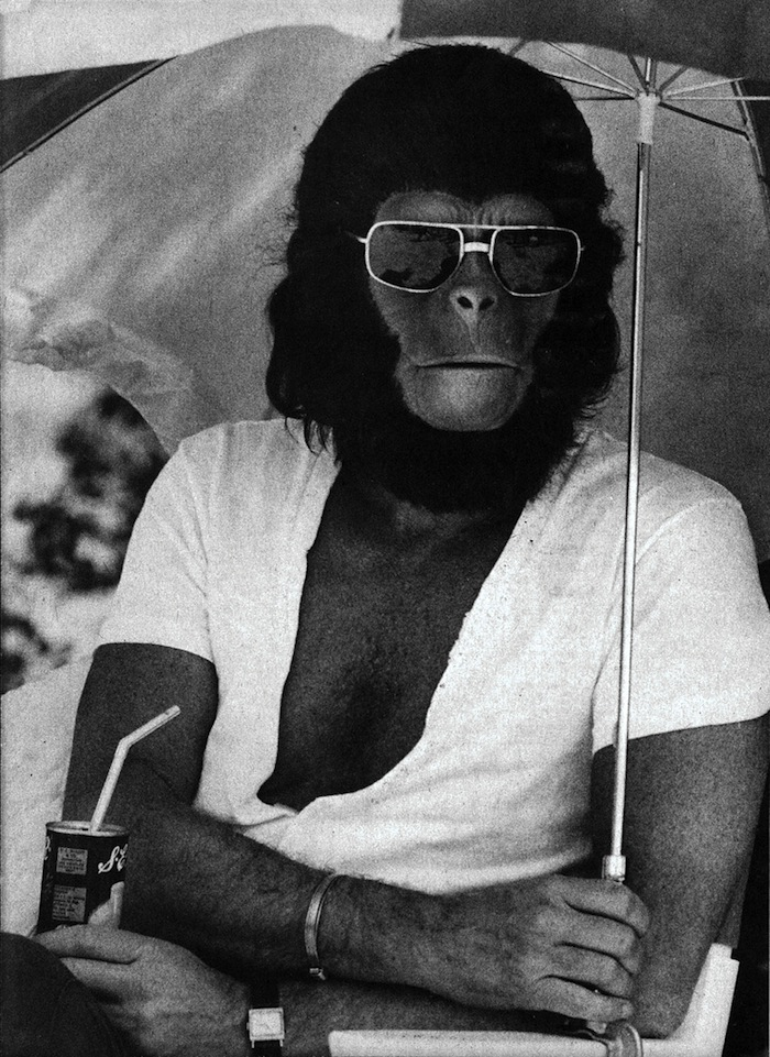 Planet of the Apes 02
