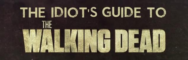 TWD idiots guide