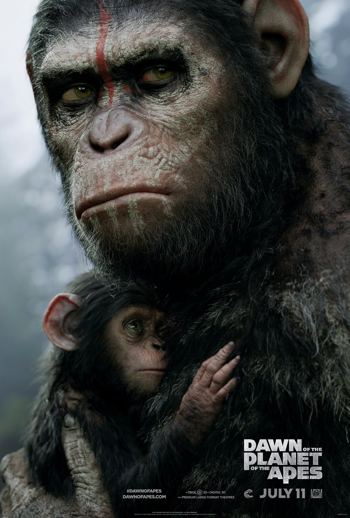 Dawn of the planets of the apes