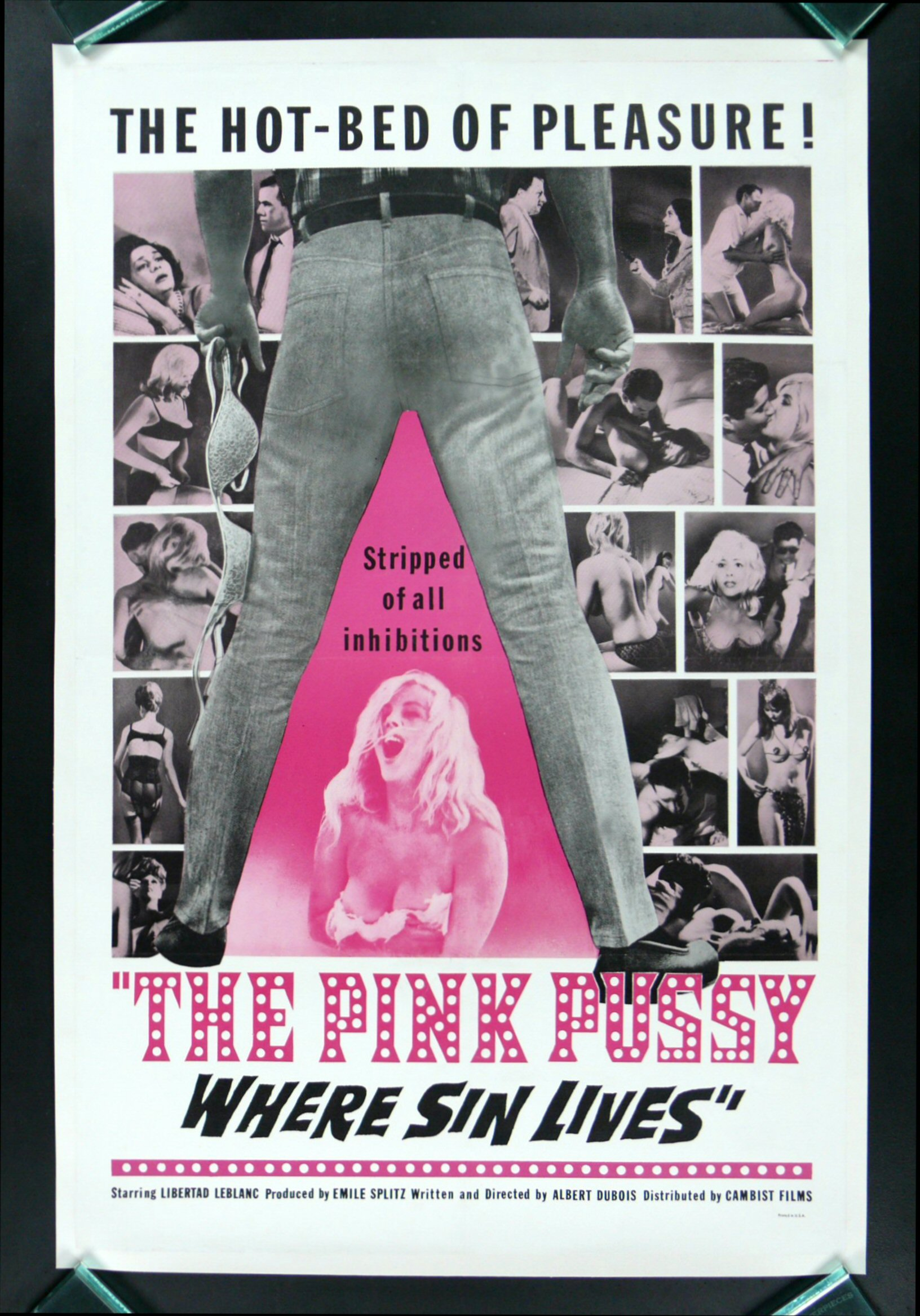 THE PINK PUSSY
